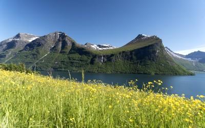 Innfjorden 2